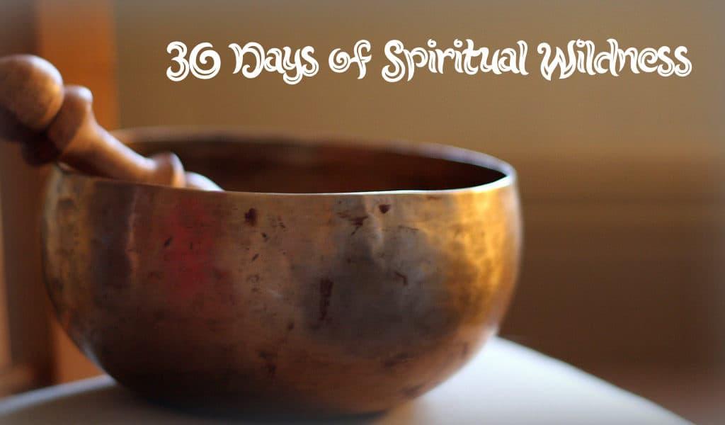 meditation bowl 5411821559_ab37e1dfc8_b